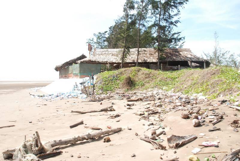 Thạnh Phú (Bến Tre): Sạt lở bờ biển nghiêm trọng, ảnh hưởng đến sinh kế người dân